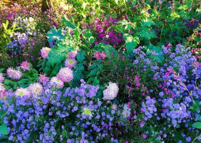 Flower Photography AkiStepinska 049 min